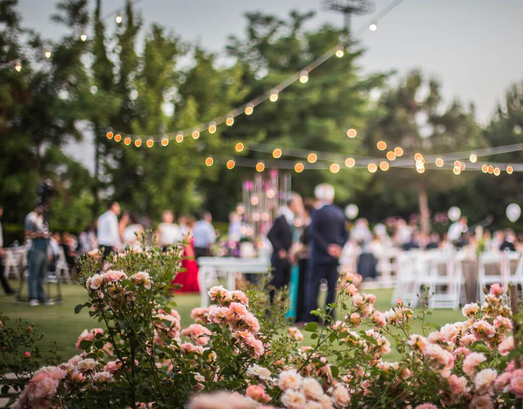 Events _ wedding